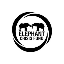 ECF - Elephant Crisis Fund